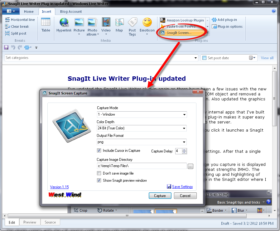 SnagitLiveWriterPlugin