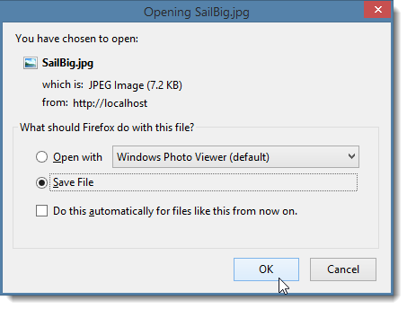 Downloading a File with a Save As Dialog in ASP NET - Rick