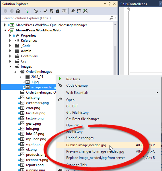 Publish Individual Files to your Server in Visual Studio