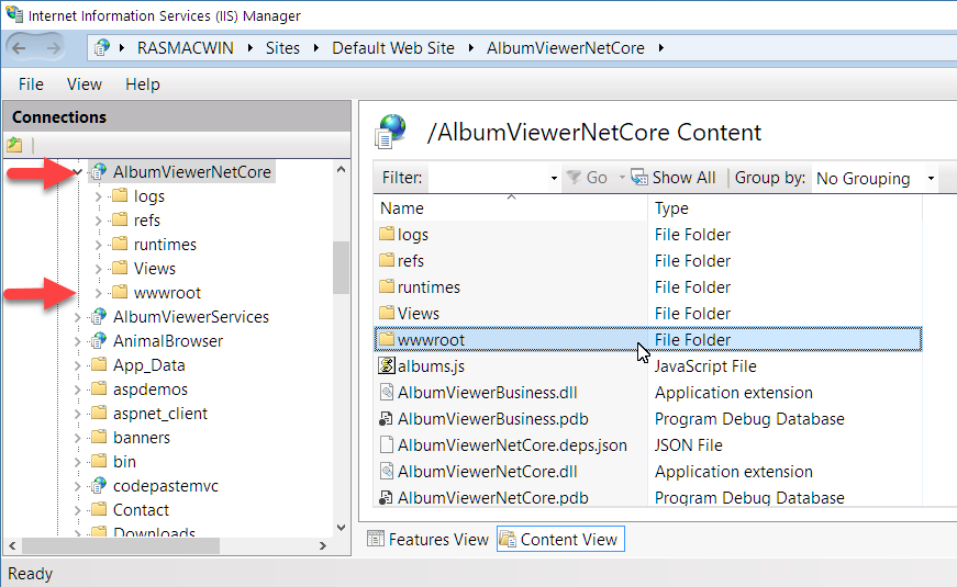 IIS and ASP NET Core Rewrite Rules for Static Files and Html