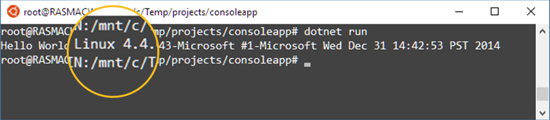 Display Linux version in .NET Core Console App